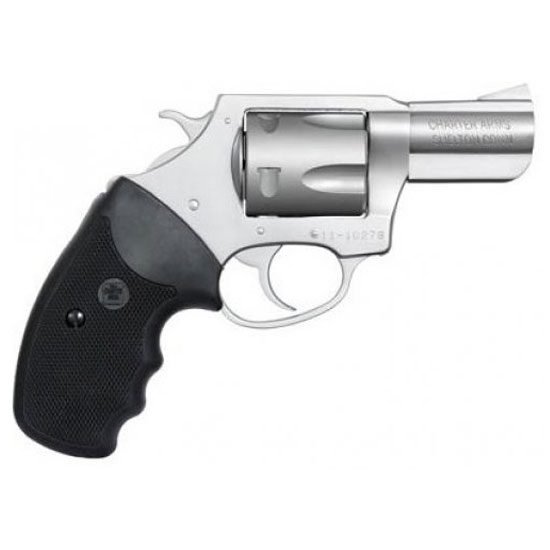 Charter Arms Pitbull 40sw 2.2 SS 5rd